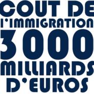 Le tabou du coût de l'immigration