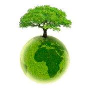 L'écologie politique, une inculture scientifique !