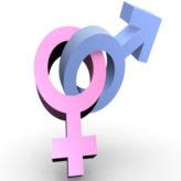 Manifestation lesbienne : le degré zéro de l'argumentation !