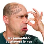 Eric Zemmour : les journalistes se pincent le nez !