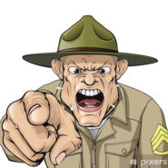 D'autres généraux enfoncent le clou !