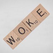 Tout ce vous avez toujours voulu savoir sur le «wokisme» sans jamais oser le demander !